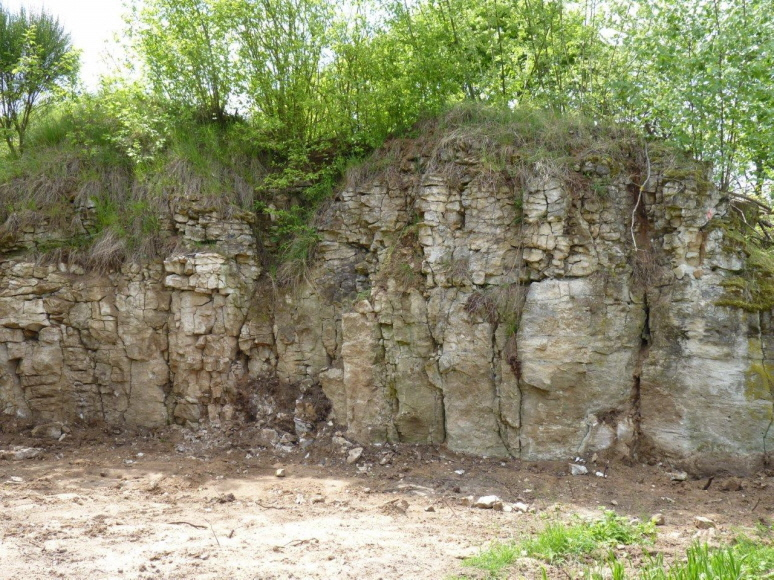 Steinbrüche 2010